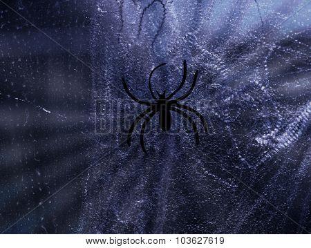 Black Halloween Spider On Spiderweb