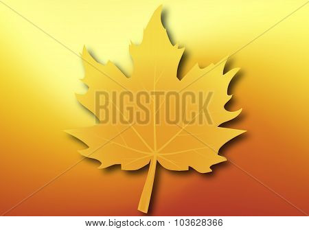 Yellow Maple Leaf On Autumn Background