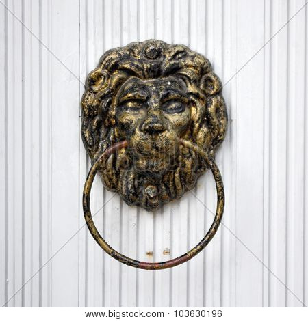 Lion Door Knocker, White Door