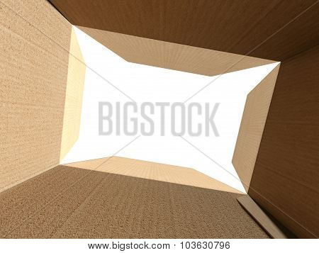Inside An Empty Cardboard Box With White Background