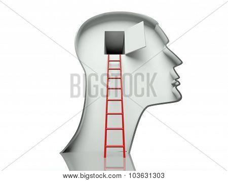 Open Door In Head And Ladder, Concept Of Open Mind