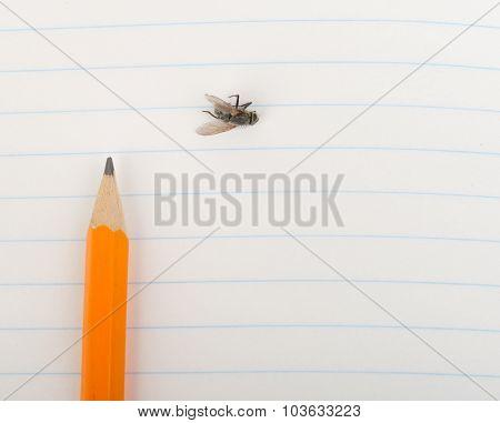 Copybook with pencil
