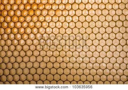 Empty  Honeycomb