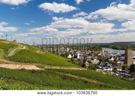 Panorama Of Ruedesheim Am Rhein