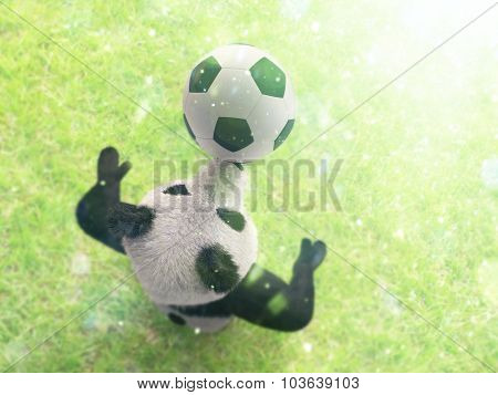 Character Circus Bamboo Bear Giant Panda Standing Spreading Legs To Sides Chasing Ball On His Nose.