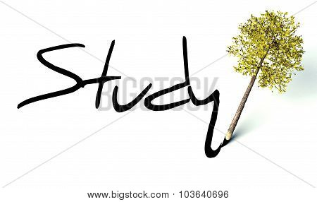 Study Concept, Ecology Wooden Pencil Tree