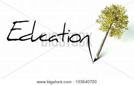 Education Concept, Ecology Wooden Pencil Tree