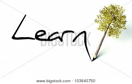 Learn Concept, Ecology Wooden Pencil Tree