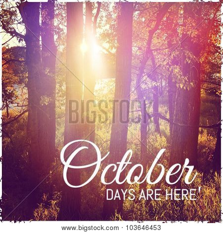 Inspirational Typographic Quote - October days are here