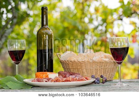Country life setting with wine, fruits, cheese and meat