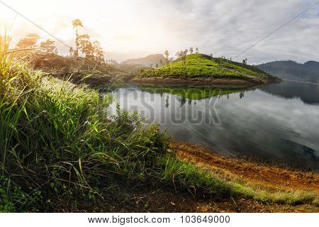 Lake and the island with tea plantation in the highland area of the country of Sri Lanka