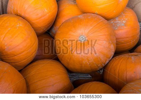 A pile of pumkins