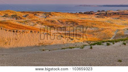 Sandy dunes during sunset. Curonian Spit