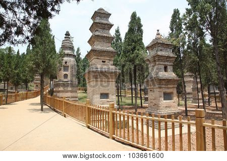 The Pagoda Forest At The Temple In Shao Lin, Located In Xian China.it's A Concentration Of Tomb Pago