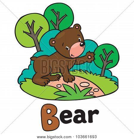 Little funny bear, for ABC. Alphabet B