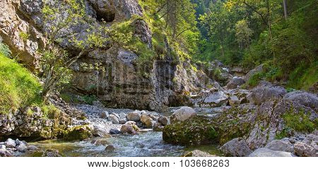 Mountain Torrent In The Bavarian Alps