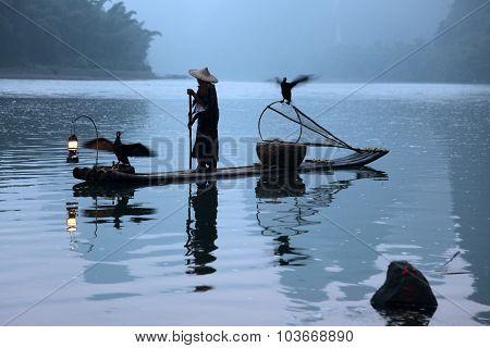 Chinese Man Fishing With Cormorants Birds, Traditional Fishing Use Trained Cormorants To Fish, China