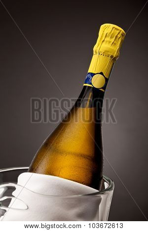 Close up of champagne bottle in glass bucket