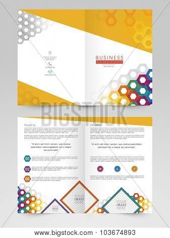 Creative abstract Brochure, Template or Flyer design with space to add images for Business.