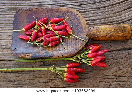 Chili Pepper Bunch On Antique Spice Scoop
