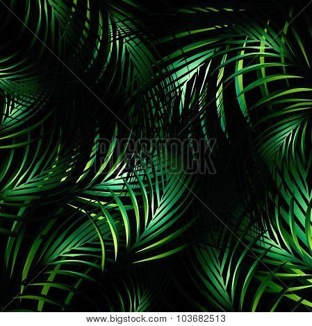 Jungle Night Background