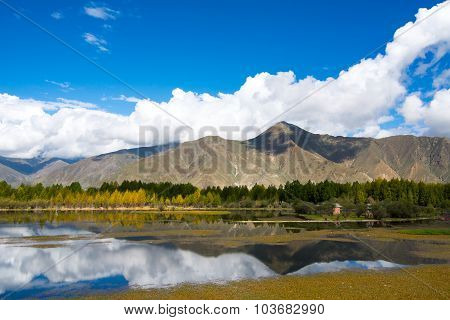 Beautiful landscape in autumn in Tibet, China