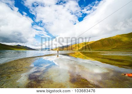 Travelers in Yamdrok lake in Tibet. It  is a freshwater lake in Tibet, it is one of the three largest sacred lakes in Tibet.