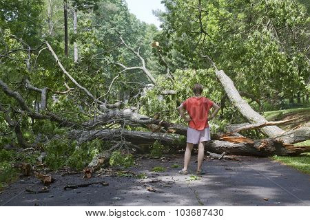 Storm Downed Tree Across Road Blocks A Young Woman's Passage
