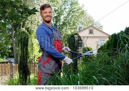 Young gardener cutting bushes with clippers