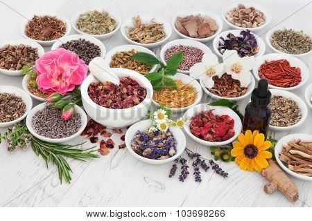 Natural herb and flower selection used in herbal medicine with medicinal dropper bottle and mortar with pestle  over distressed wooden background.