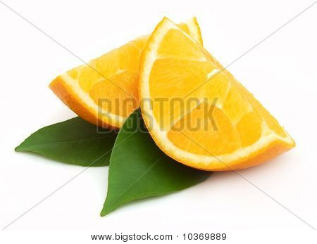 Orange Lobes