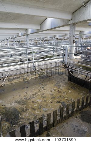 Tanks in a sewage treatment plant