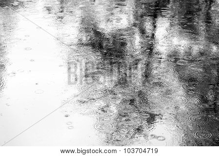 Reflection Into Puddle On Pavement