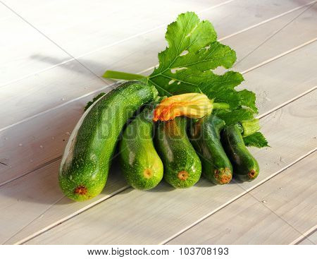 the composition of zucchini
