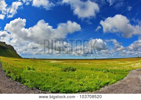 Warm summer days in Iceland. Footpath among the green meadows