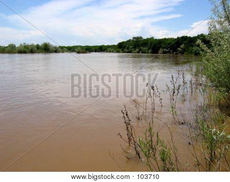 Rio Grande Wetlands