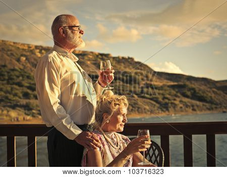 Elderly couple drinking a glass of wine