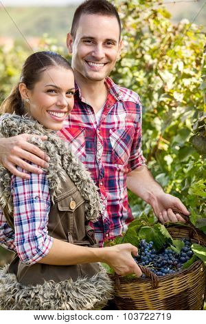 Young smiling  couple in vineyard posing with a wicker basket