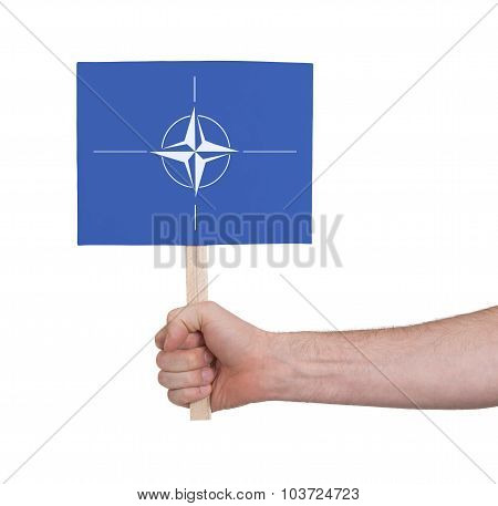 Hand Holding Small Card - Flag Of Nato