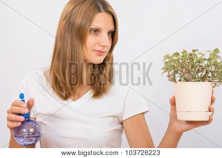 She Considers The Potted Plants Before Humidification