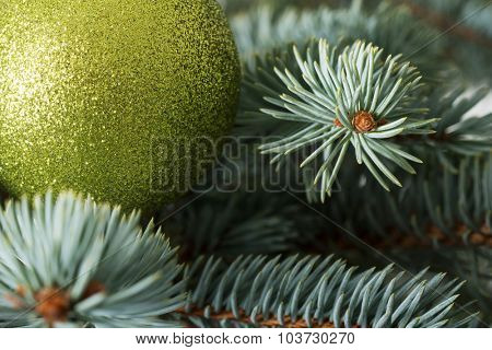 One christmas ball on a tree. On green background.