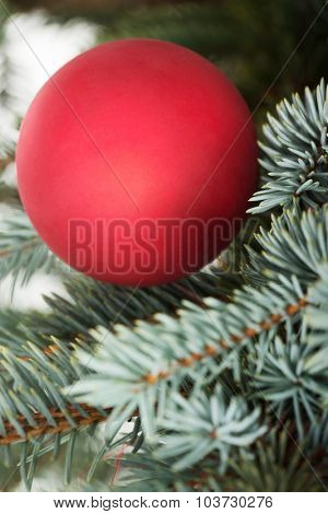One christmas ball over tree background