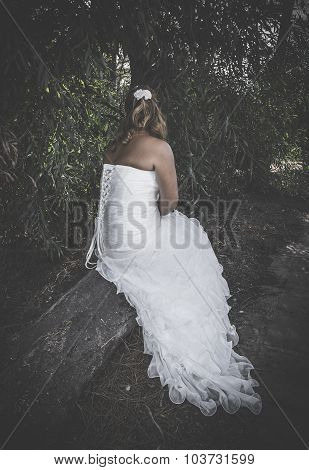 Wedding Day At Sea And In The Forest