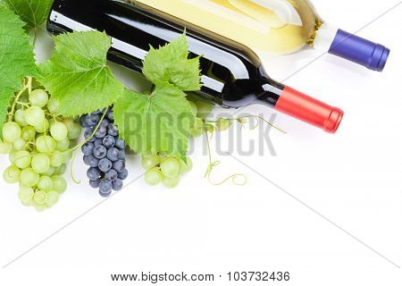 Bunch of red and white grapes and wine bottles. Isolated on white background with copy space