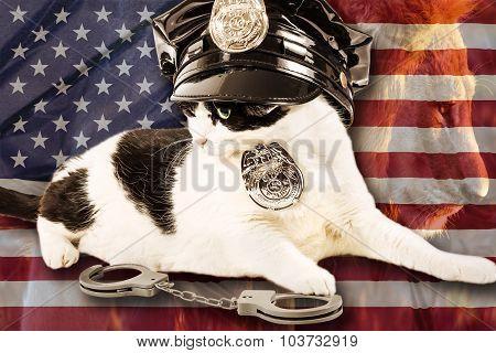 Brave Cop Cat