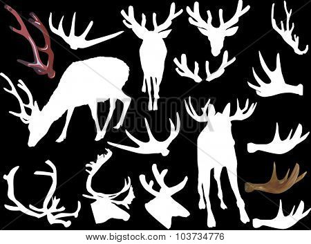 illustration with set of horned animals and antlers isolated on black background
