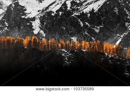 Autumn, ray of light