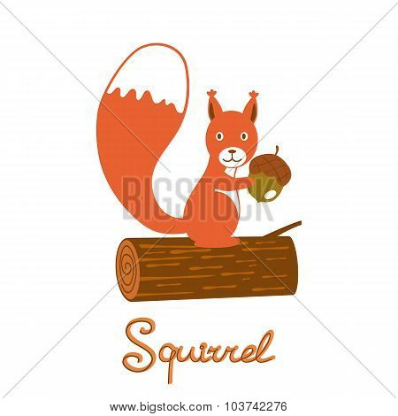 Little squirrel character