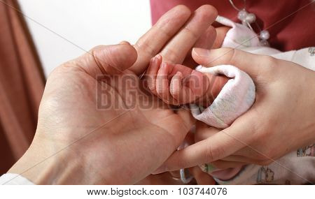 Little  baby hand in the hands of mom and dad