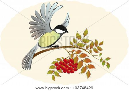 Tit takes sits down with Rowan branches with berries. EPS10 vector illustration.
